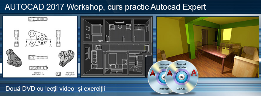 Curs Autocad 2017 Workshop Expert